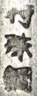 tokushukō