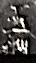 s-1901-6-iwasaki-tamahagane-1a1-kopie