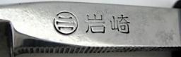 IWASAKI T Tanifuji 1a2